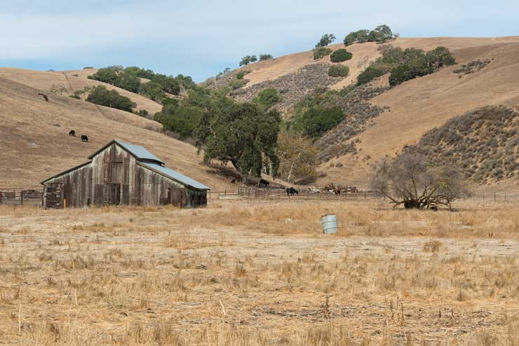 Ranch in California in drought conditions
