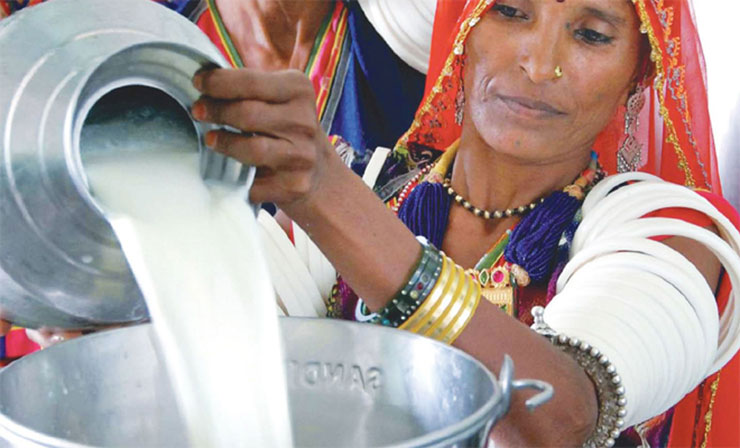 Indian woman in dairy